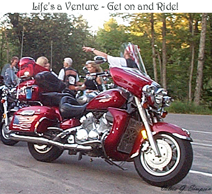 Life's a Venture